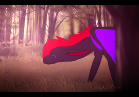 Shadow Crystol animationg -practice... by Shadow-Crystol