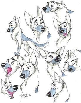 A Bunch of Stars by Stray-Sketches
