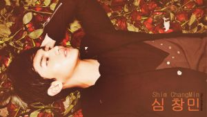 DBSK: Shim ChangMin Wallpaper by ShyraSakuso