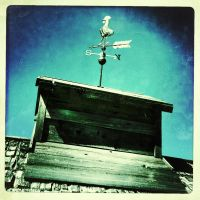 Rooster Weathervane by trickytreater