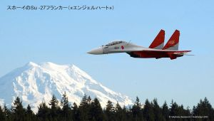 Japan Air Force Sukhoi Flanker by Bispro