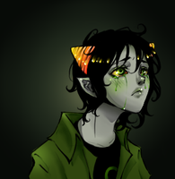 Nepeta by naanan