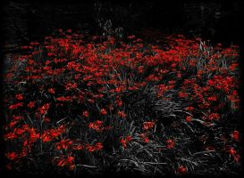 ending in red by awjay