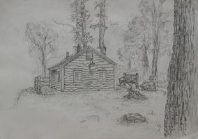 Cabin in the woods by LilioTheOne