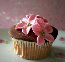 pink and brown by ZaLita