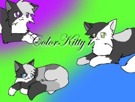 ColorKitty7 by Snow-Berries