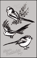 Inktober Long-tailed Tits by elbdot
