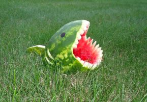 Attack of the Melon-Shark! by A-fuzz