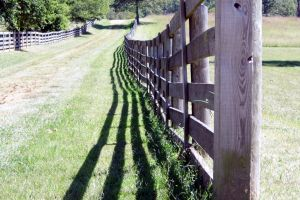 3 Fences and A Trail to Nowhere by annieheart12
