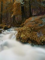 Rivendell 2 by Dragoroth-stock