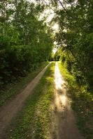 Road to Somewhere Nice by Link7788