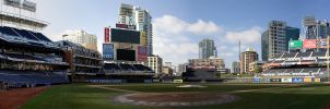 Home Plate View by dkbarto