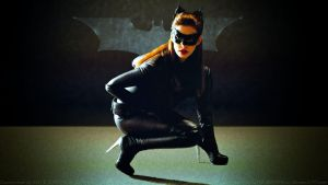 Anne Hathaway Catwoman III by Dave-Daring