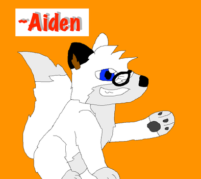 OC: Aiden by nintendoloz