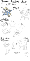 Pokemon Anatomy study - Samurott by Evildraws