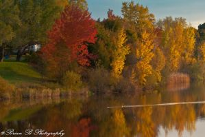 Jones Lake,Moncton 3 by Brian-B-Photography