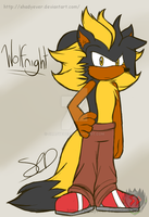 Wolfnight The Wolf by shadyever