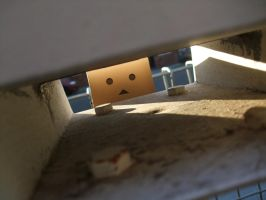 Danbo through the letter box by VeritaDea