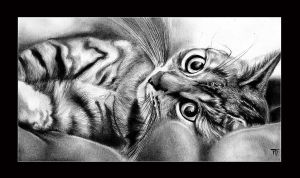 LiTtlE tiGeR by Dewona