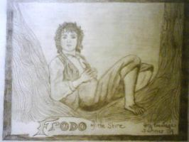 Frodo of the Shire by ZoulJiin