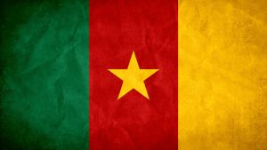 Cameroon Grunge Flag by SyNDiKaTa-NP