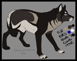 Wolf Adopt (Natural design) - CLOSED by x-aki