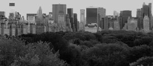Over Central Park by jenheinser