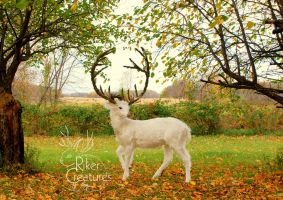 Vali the White Stag ~ Fantasy Creature Sculpture by RikerCreatures