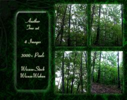 Trees set wicasa-stock by Wicasa-stock