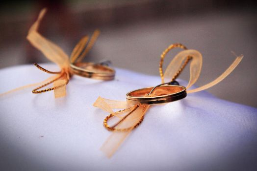 Wedding Rings by JFCespedes