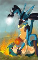 lucario vs quilava by LawrenceJL