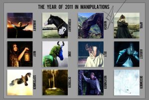 2011 Manipulations by Anaeo-vale