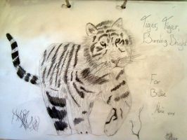Tiger for Billie by XcubX