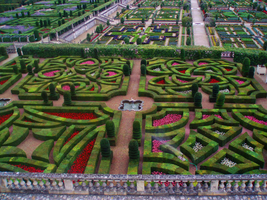 The garden of the Castle : Villandry by Ludo61