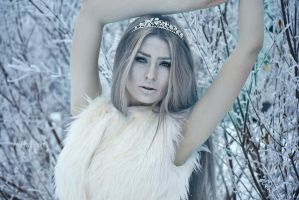 The queen of the winter by alina0