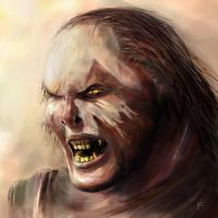 Uruk Hai by insanewarlock