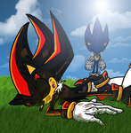 The Death of Shadow the Hedgehog by Peacekeeperj3low