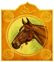 arabian horse by hefne