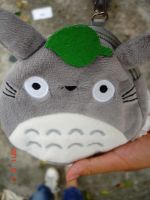 Totoro by jemmiie