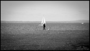 Walk with Dog by MiusaPictures