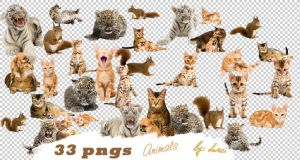 Animal Png Pack by dorina-site