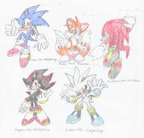 Favorite Sonic Characters by DragonRex1