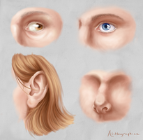 Practice - Facial features by Alithographica