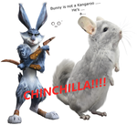ROTG : Bunny is a CHINCHILLA! by oO-Vanessa-Oo