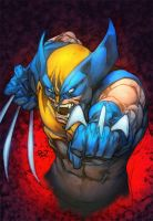 Wolverine by PANT by BoOoM