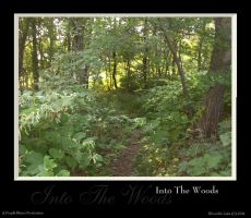 Into The Woods by purplerhino