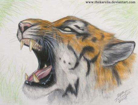 Roar of the Tiger. by TheKarelia