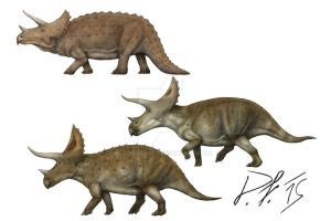 Triceratops over the centuries by Pachyornis