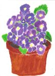 Violets in a Pot - Pastel WIP by utriv