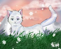 White Cat by Annalei